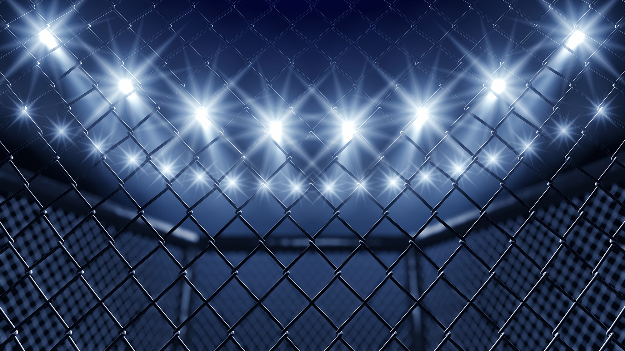 Cage For Wrestling Ring